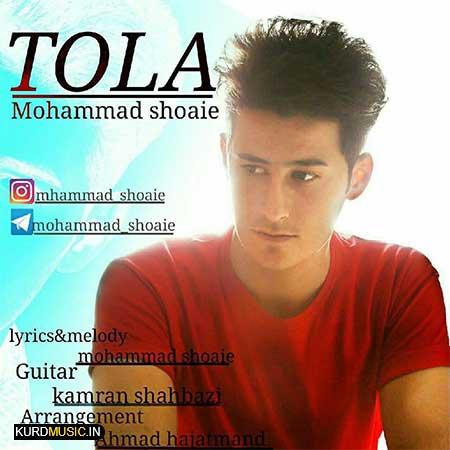 محمد شعاعی – توله